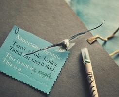 雅思写作:那些高分大神都用过的100个句子