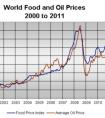 雅思图表小作文范文:全球食物和石油价格变化及对比